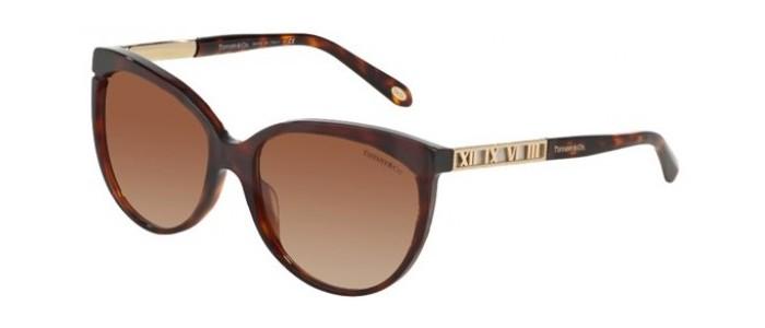 Tiffany & Co TF4097 8002/3B